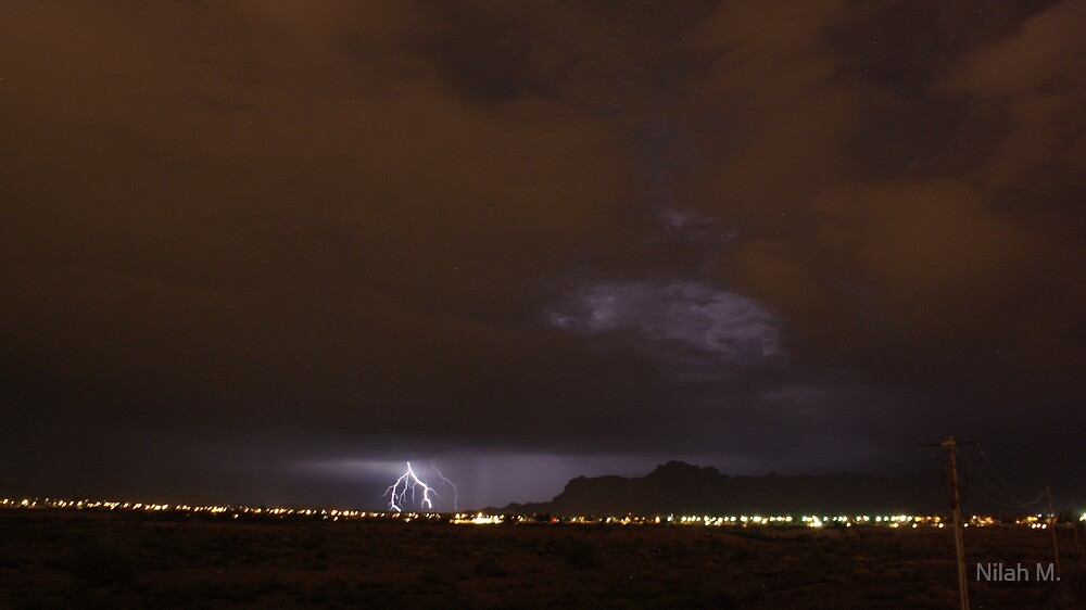 Lightning Roots by Nilah M.