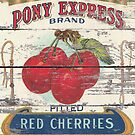 Retro advertisement orchard fruit french country red cherry by lfang77