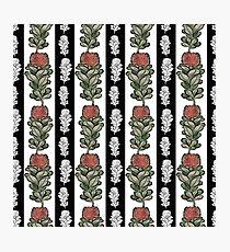 Bold Australian Native Floral Stripes - CreateArtHistory Photographic Print