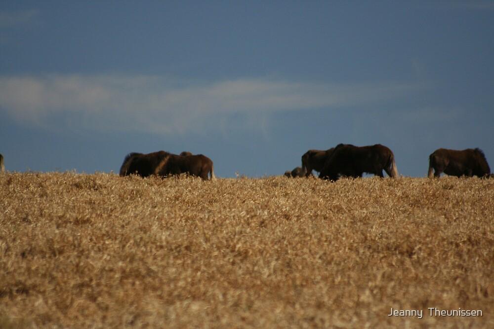 Buffalo grasing by Jeanny  Theunissen