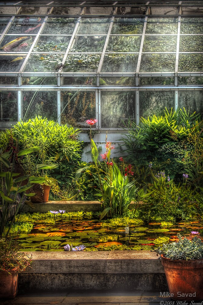 The Greenhouse II by Michael Savad