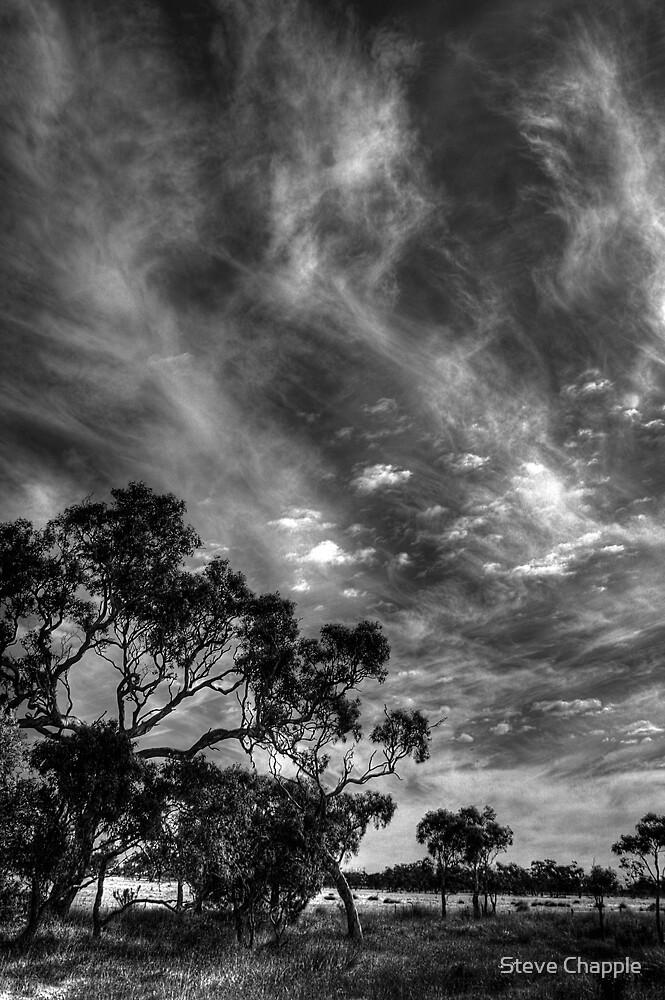 Big Sky by Steve Chapple