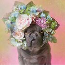 Flower Power, Pika by SophieGamand