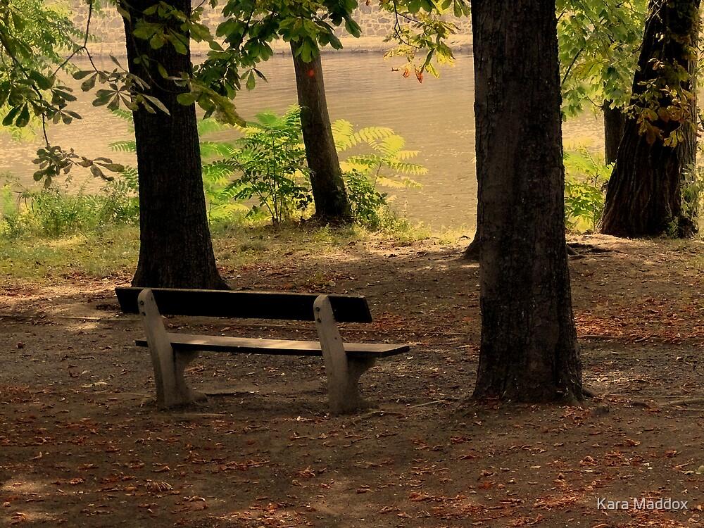 solitude by Kara Maddox