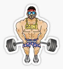 High GAINZ Sticker