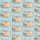French Bulldog Puppy  by zoel