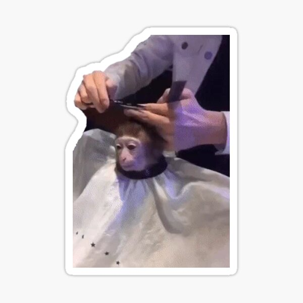 Monkey Haircut Sticker