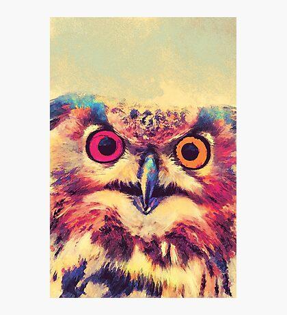 Owl art 2 #owl #animals Photographic Print