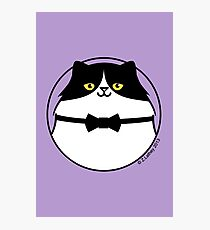 Sophisticated Black & White Cat Photographic Print