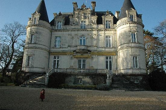 Castle Tortiniere, Tours, France by chord0