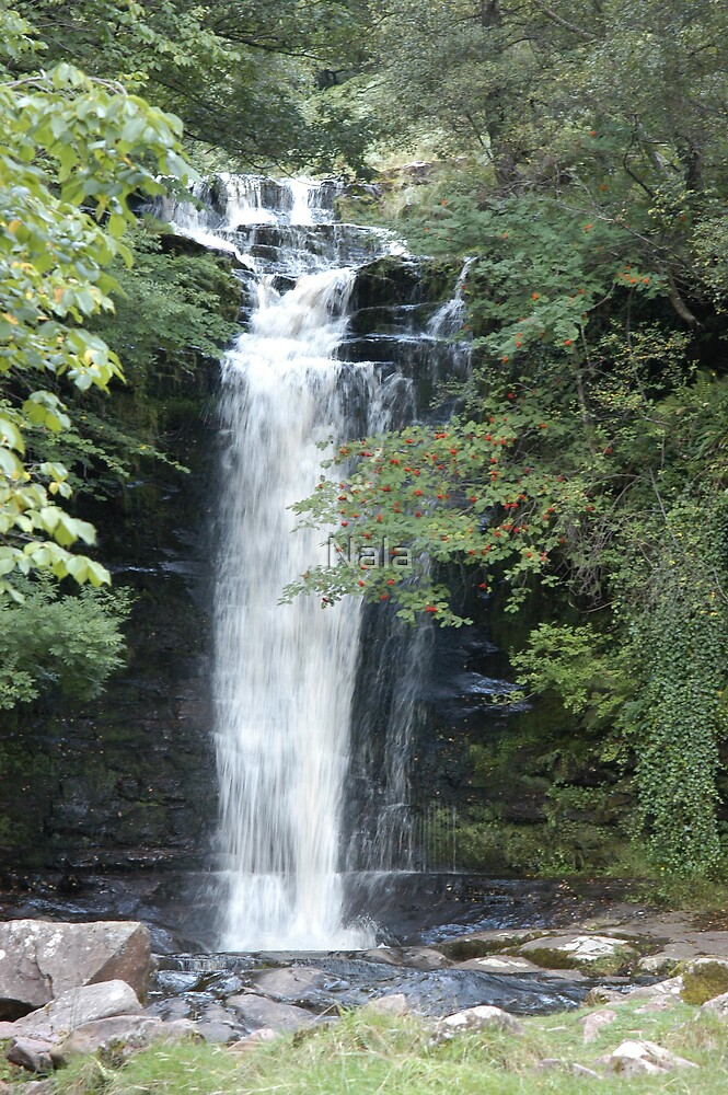 Waterfall by Nala