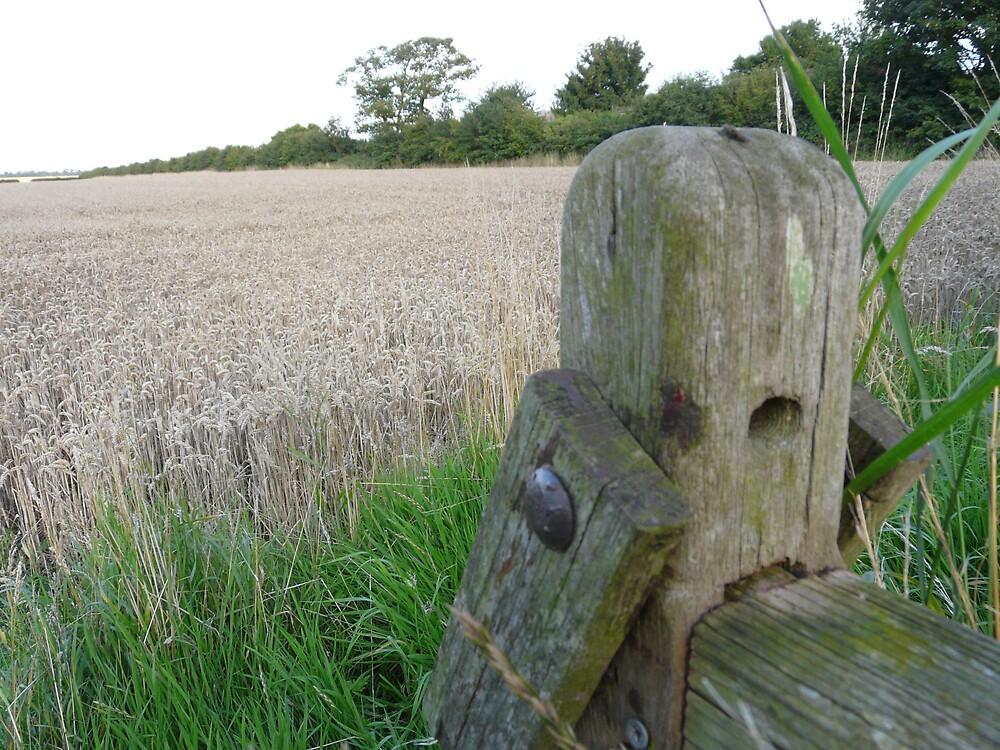 Wooden gate latch by Freya  Sykes