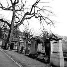 Holyroodhouse Cemetery by valerieparent