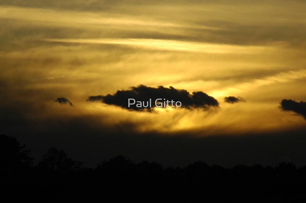 Light Day - Dark Night by Paul Gitto