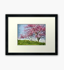 Pink Flowering Tree Framed Print
