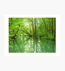 Spring Green Reflections Art Print