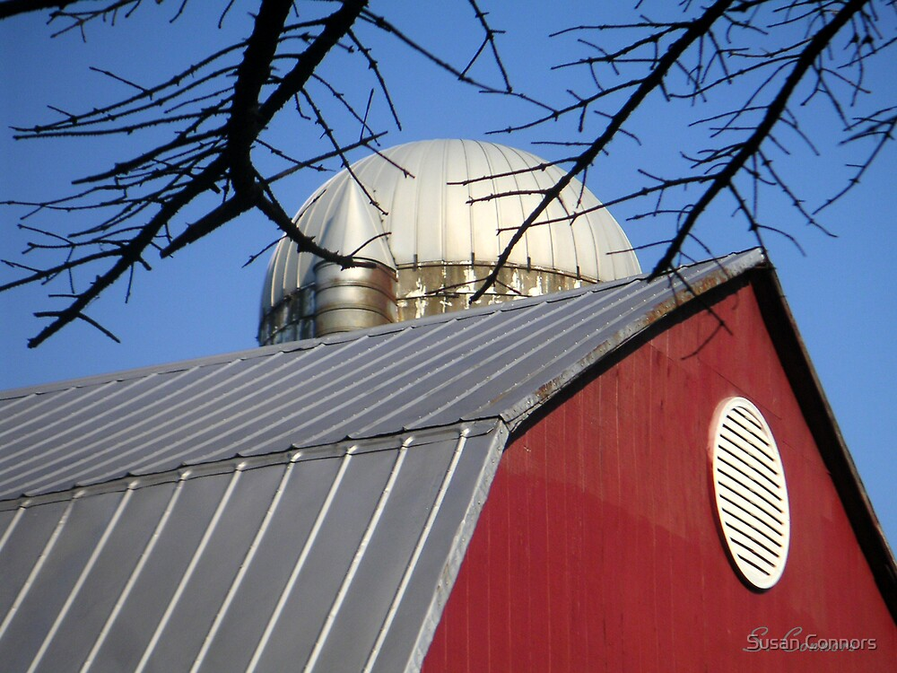 Red Barn and Silo by Susan Connors