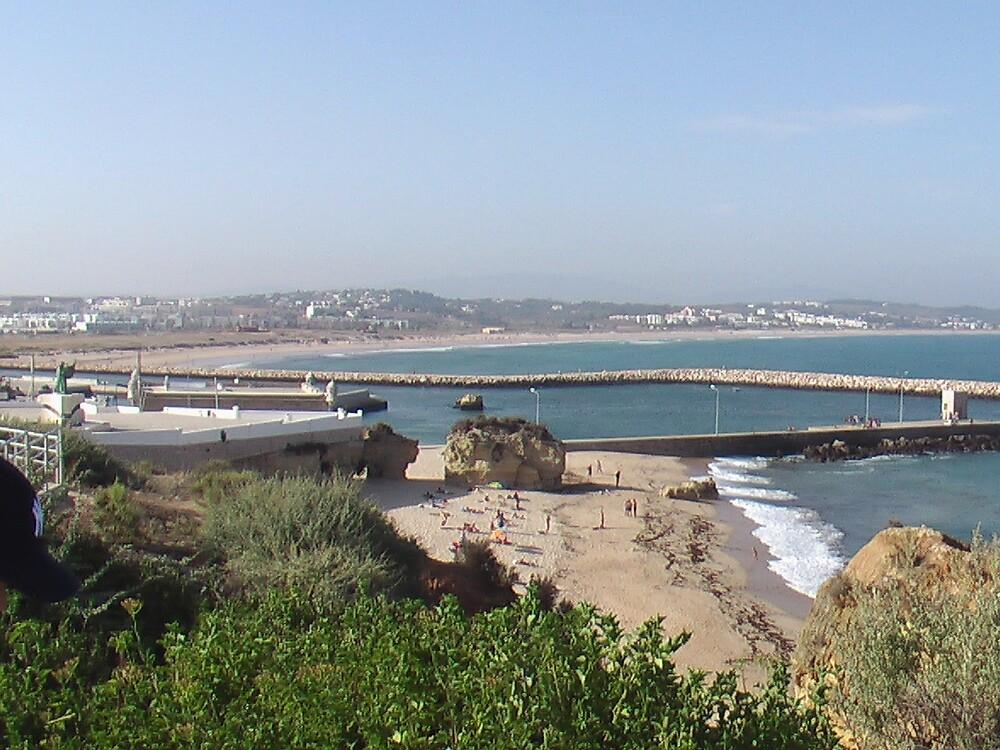 Beach of Portugal by Daniel Simoes
