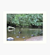 River Valley - Calm Water Art Print
