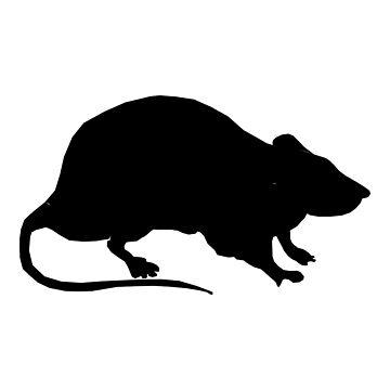 Rat by MizukageKira