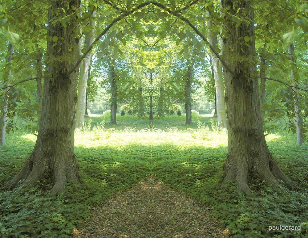 Magic Garden by paulgerard