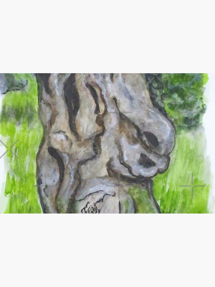 Wisdom Olive Tree by cjkell