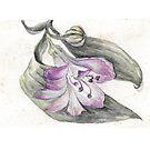 Flower by Yana Art