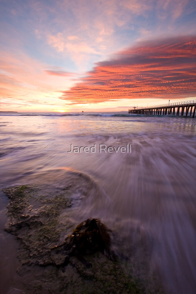 Into The Sun by Jared Revell