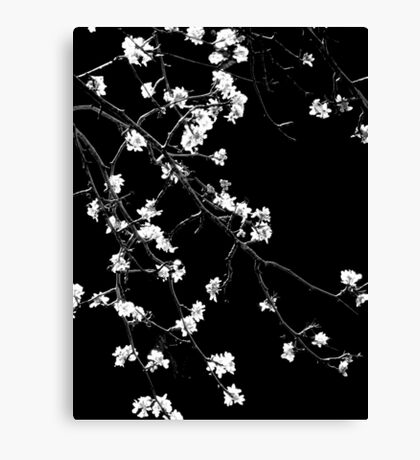 Orientique Canvas Print