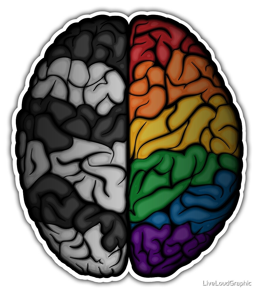 LGBT Ally Brain by LiveLoudGraphic