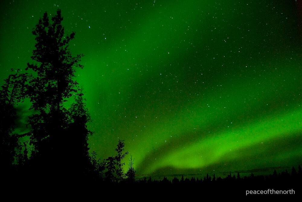 September Auroras #5 by peaceofthenorth