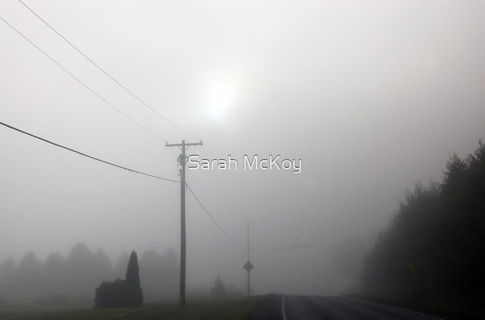 Misty Morn by Sarah McKoy