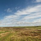 Big skies in a panorama over lands end cornwall by eddiej