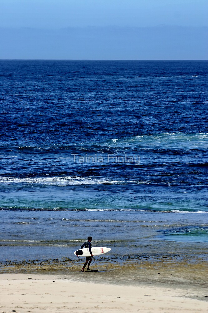 Into The Blue by Tainia Finlay