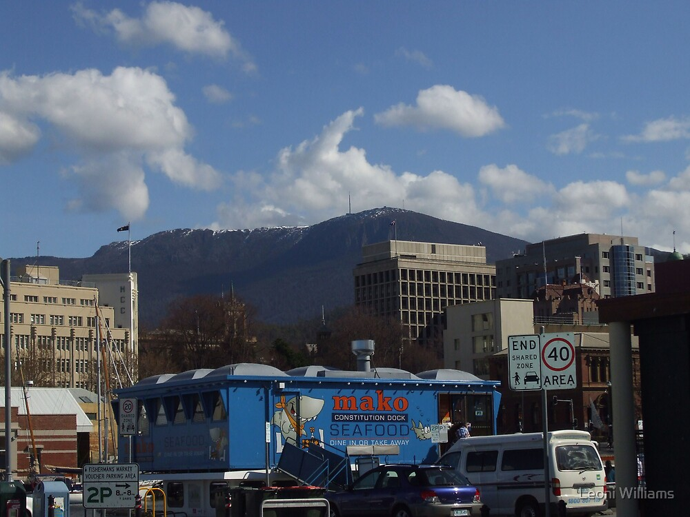 Mountain from the docks. by Leoni Williams