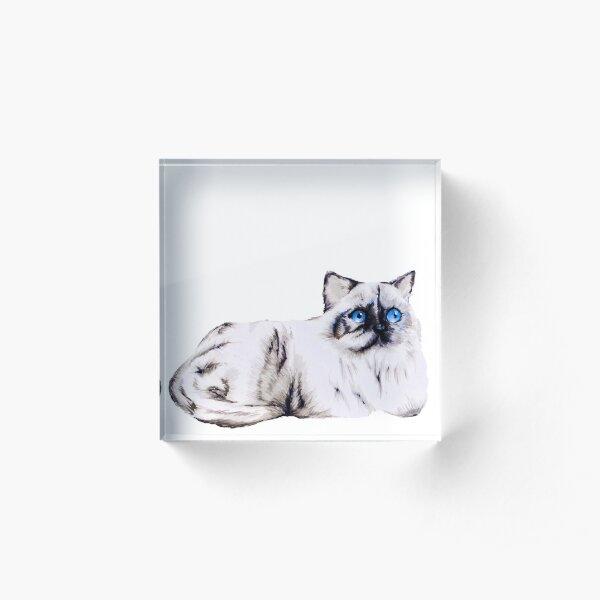 Lucy cat Acrylic Block