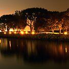 Tree Reflection by ajjj