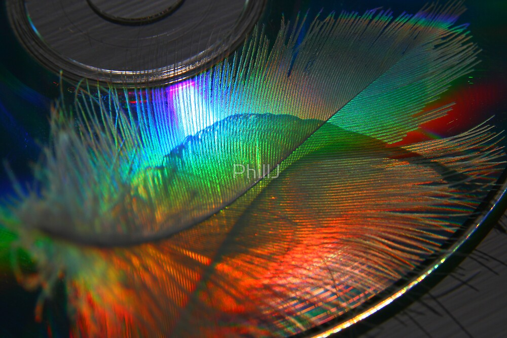 CD & Feather by PhillJ