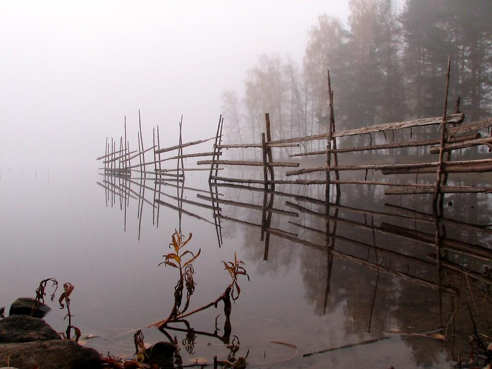 'Autumn stillness' by Petri Volanen
