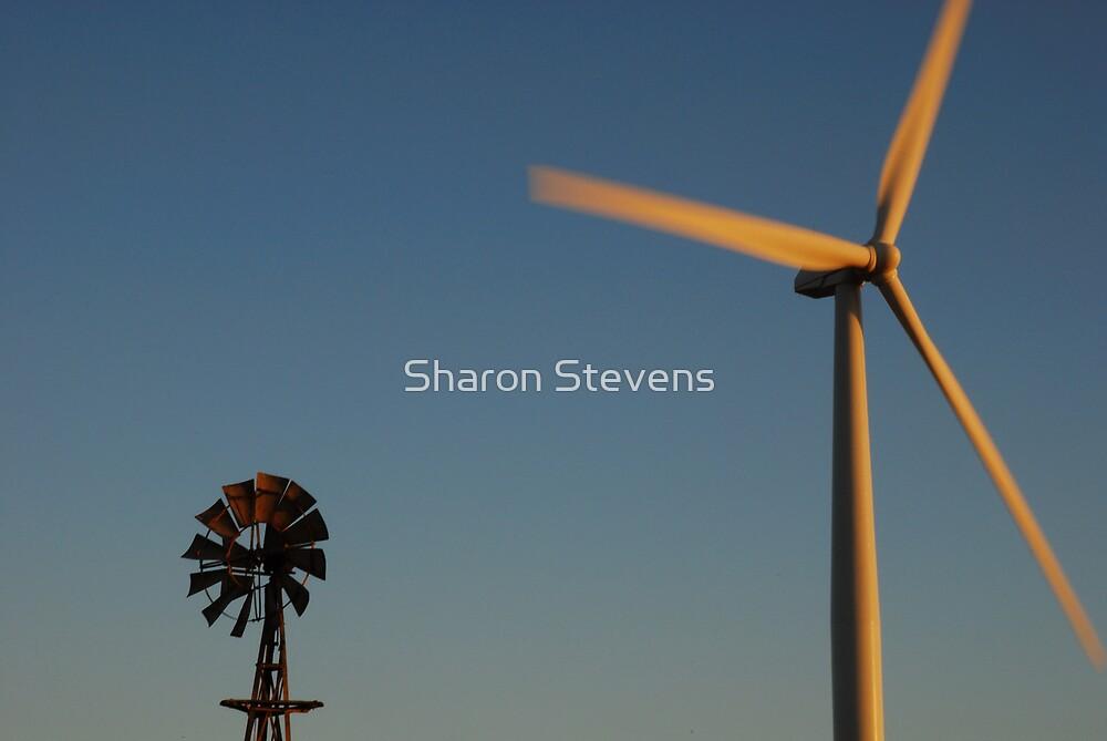 OldvsNew by Sharon Stevens