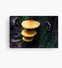1736 The stack Canvas Print