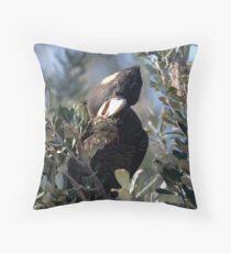 Cracking Banksias Throw Pillow