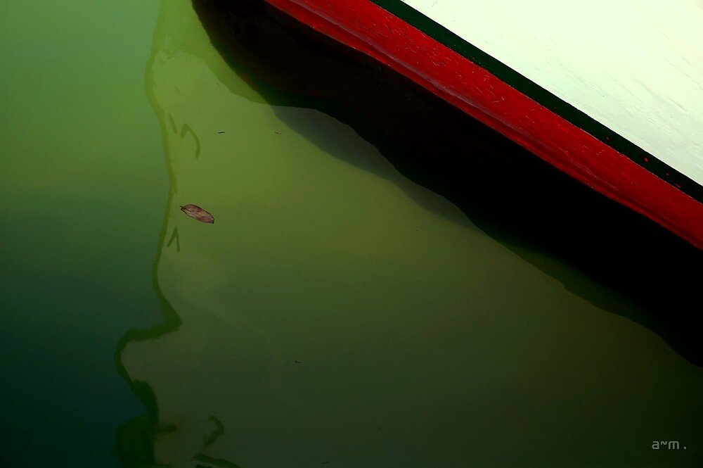 ~A boat, a leaf and some tiny little fish~ by a~m .