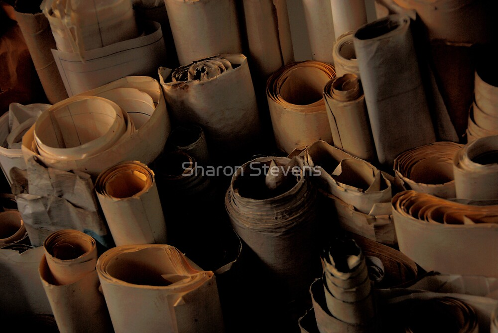 Scrolls by Sharon Stevens