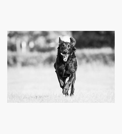 Run like there's no tomorrow Photographic Print