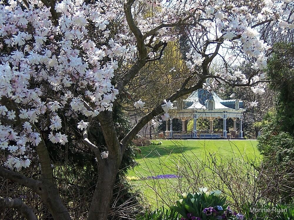 Spring at Last! by Monnie Ryan