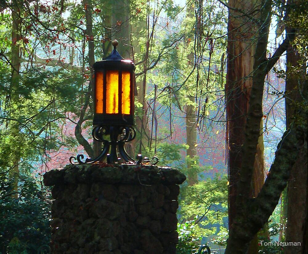 Gate Light by Tom Newman