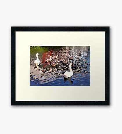 Surrounded With Love Framed Print