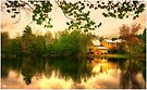 Dusk on Chocorua Pond by Wayne King