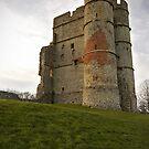Donnington Castle by llemmacs
